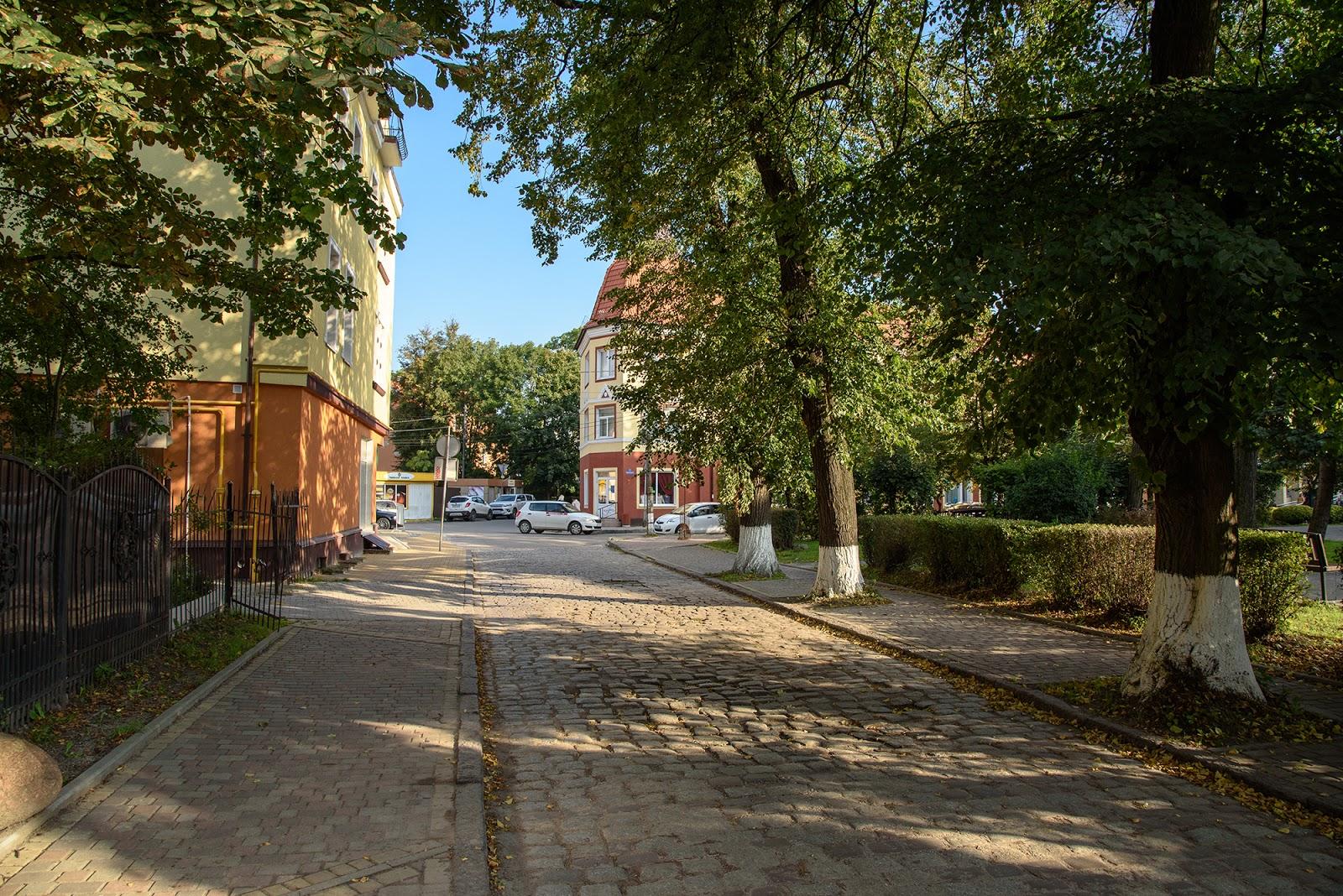 Улица в Зеленоградске
