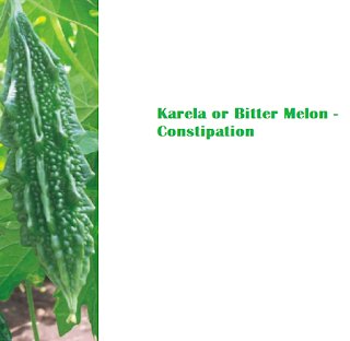 Health Benefits Of Karela or Bitter Melon - Constipation