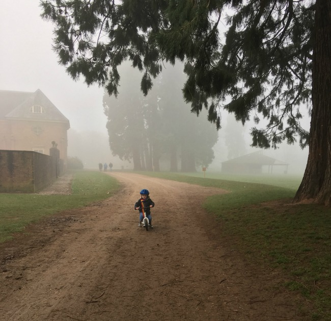 Our-Weekly-Journal-30th-Jan-2017-toddler-on-bike