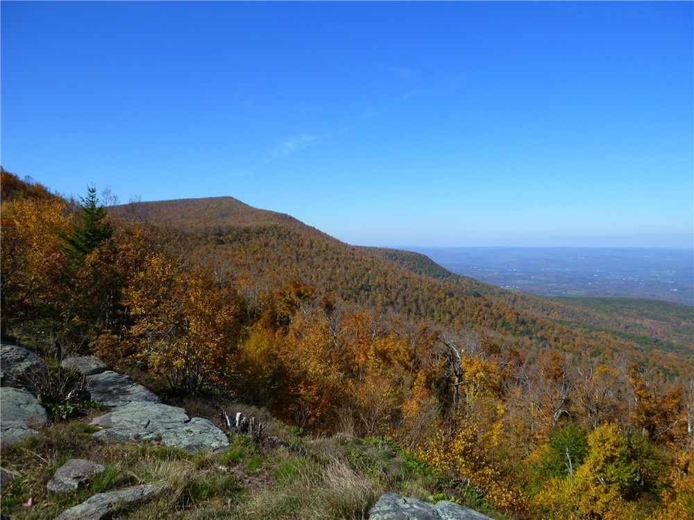 Gone Hikin': Catskill Park, NY: Windham High Peak, Burnt Knob, Acra Point