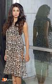 Sanjana Glamours Stills-thumbnail-1