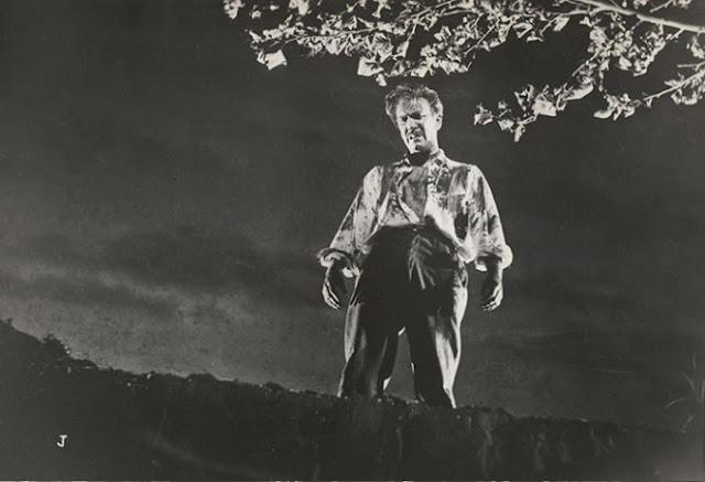 Carlos Cores, Los Tallos Amargos (1956)