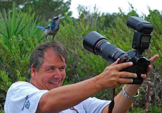 Crazy Photographers Bird on Head