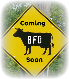 big fat daddys barbecue cow sign
