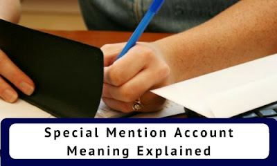 Special Mention Account: Meaning Explained