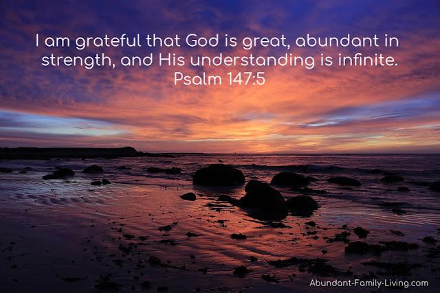 Psalm 147:5