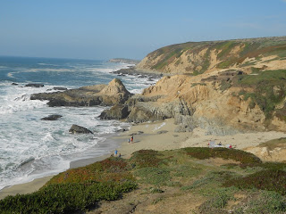bodega head California