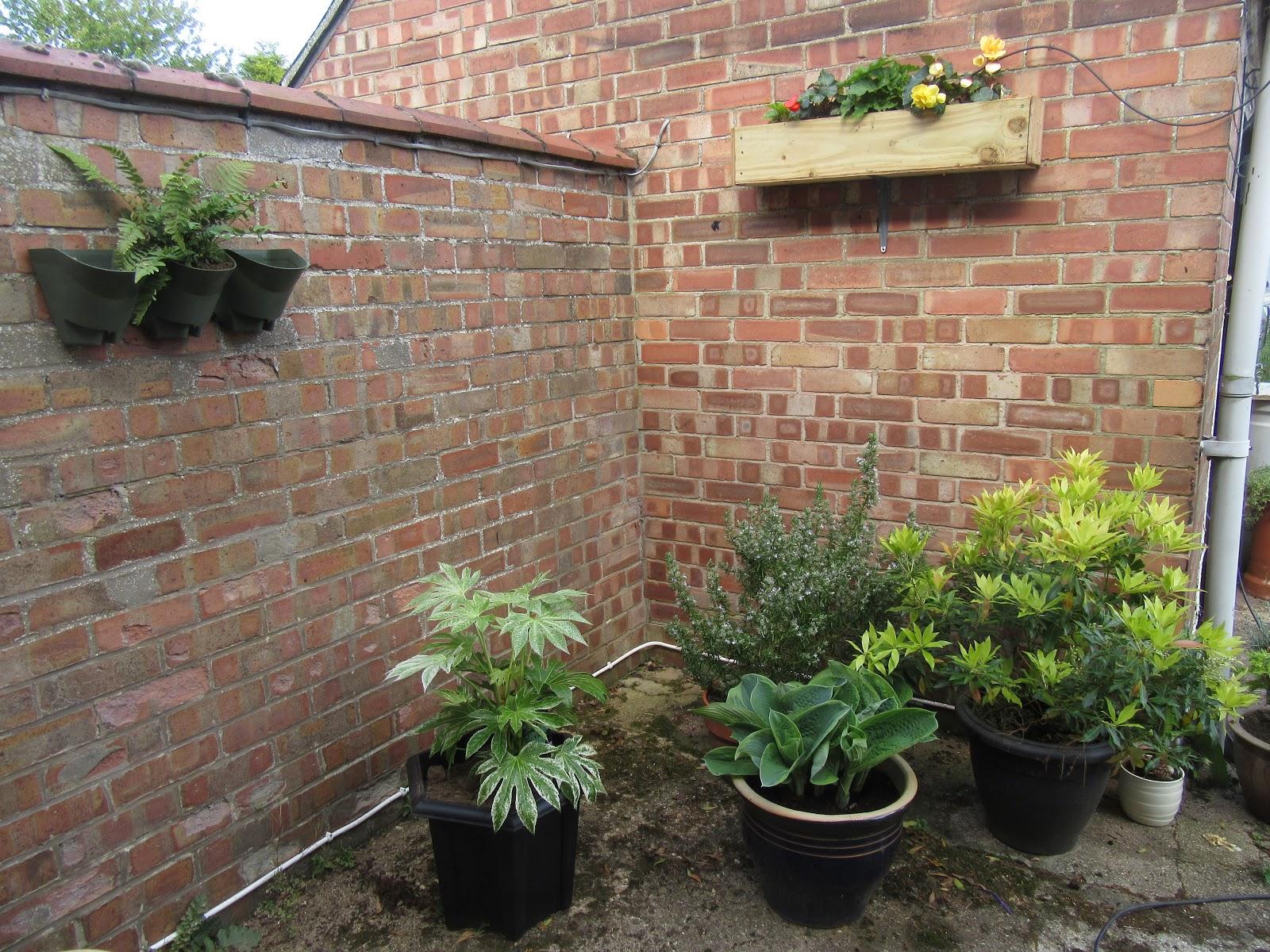 Trish Wish Living Well in Retirement: Courtyard gardening