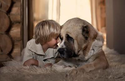fotografia tierna de niñito con su perro