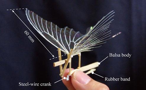 Alpha Romeo How To Make A Rubber Band Powered Ornithopter
