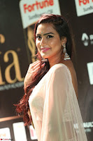 Prajna in Cream Choli transparent Saree Amazing Spicy Pics ~  Exclusive 030.JPG