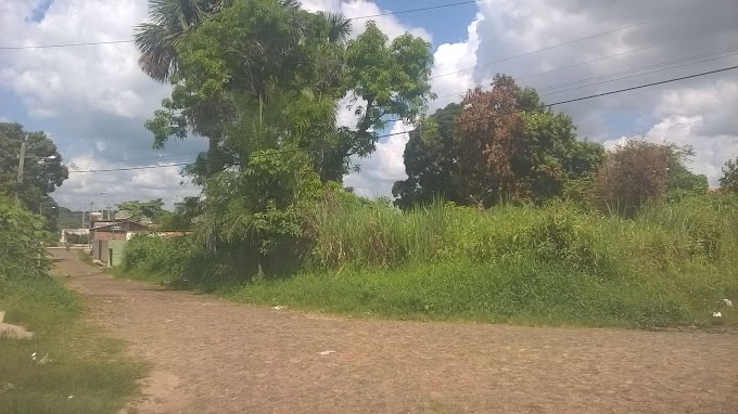 CARTA ABERTA: Leitor do Blog pede providências sobre abandono na Trav. Aniceto Cruz em Caxias