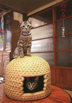 Japanese Cat Baskets Root Simple