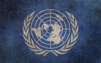 United Nations Puzzle