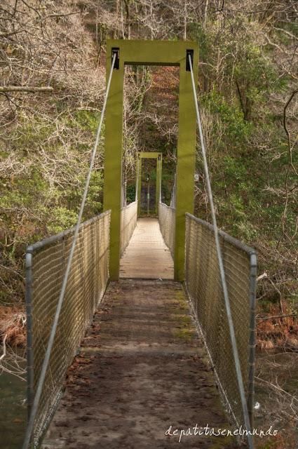 Puente colgante Cal Frande Fragas del Eume