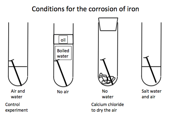 The First Test Tube Is Control Experiment In Which There An Iron Nail Immersed Water And Contact With Air Rusts This