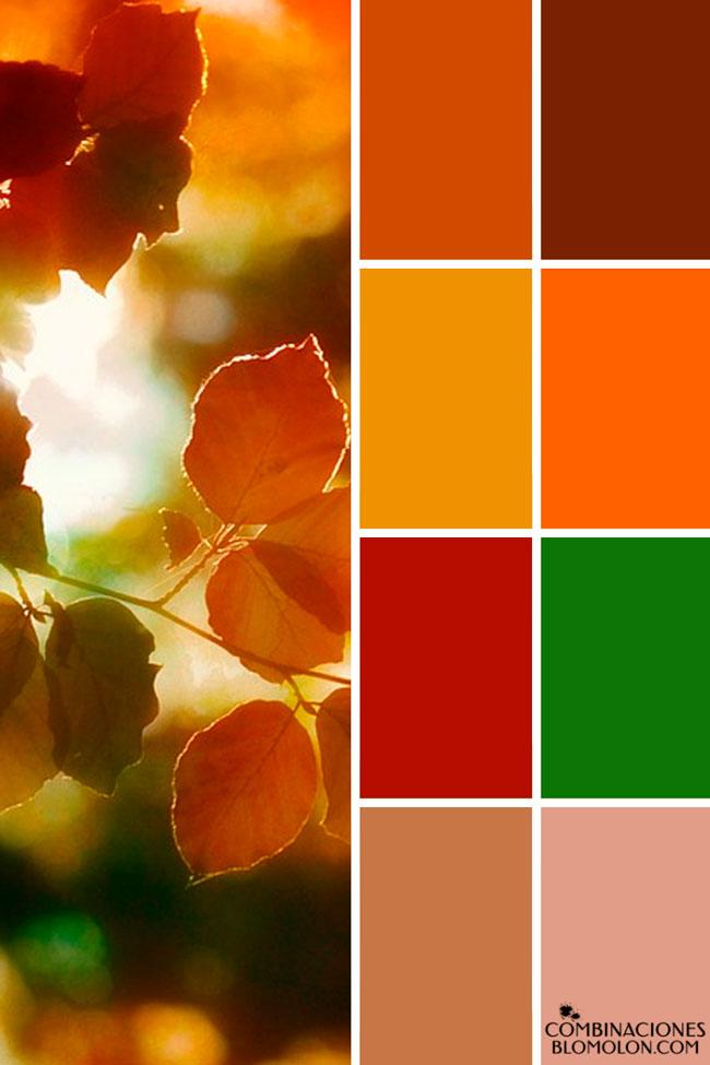 combinacion_de_colores_variedad_3