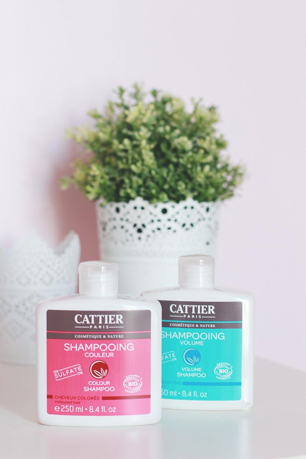 shampooing cattier