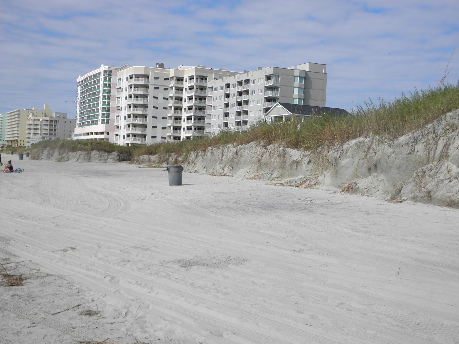 North Myrtle Beach Sea Turtle Patrol