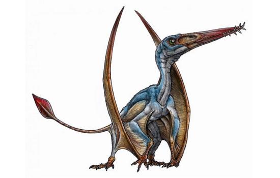 Laporan Penelitian Reptil Terbang Allkauren koi Oposisi Penguasa Langit Pterosaurus