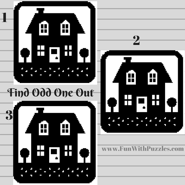 Odd One Out Hut Picture Puzzle-4