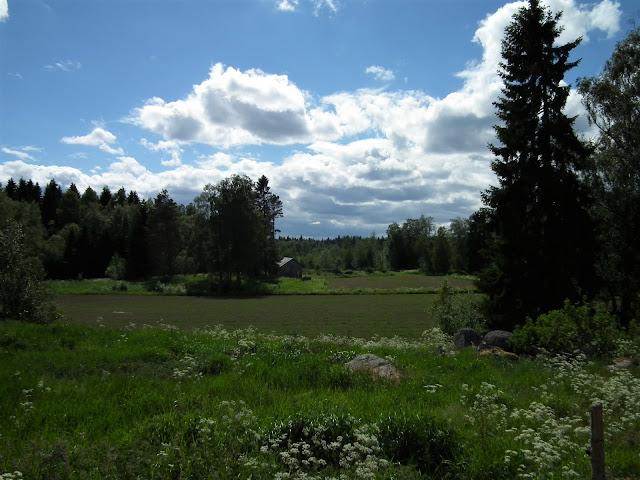 Kesä, Alajoki, luonto
