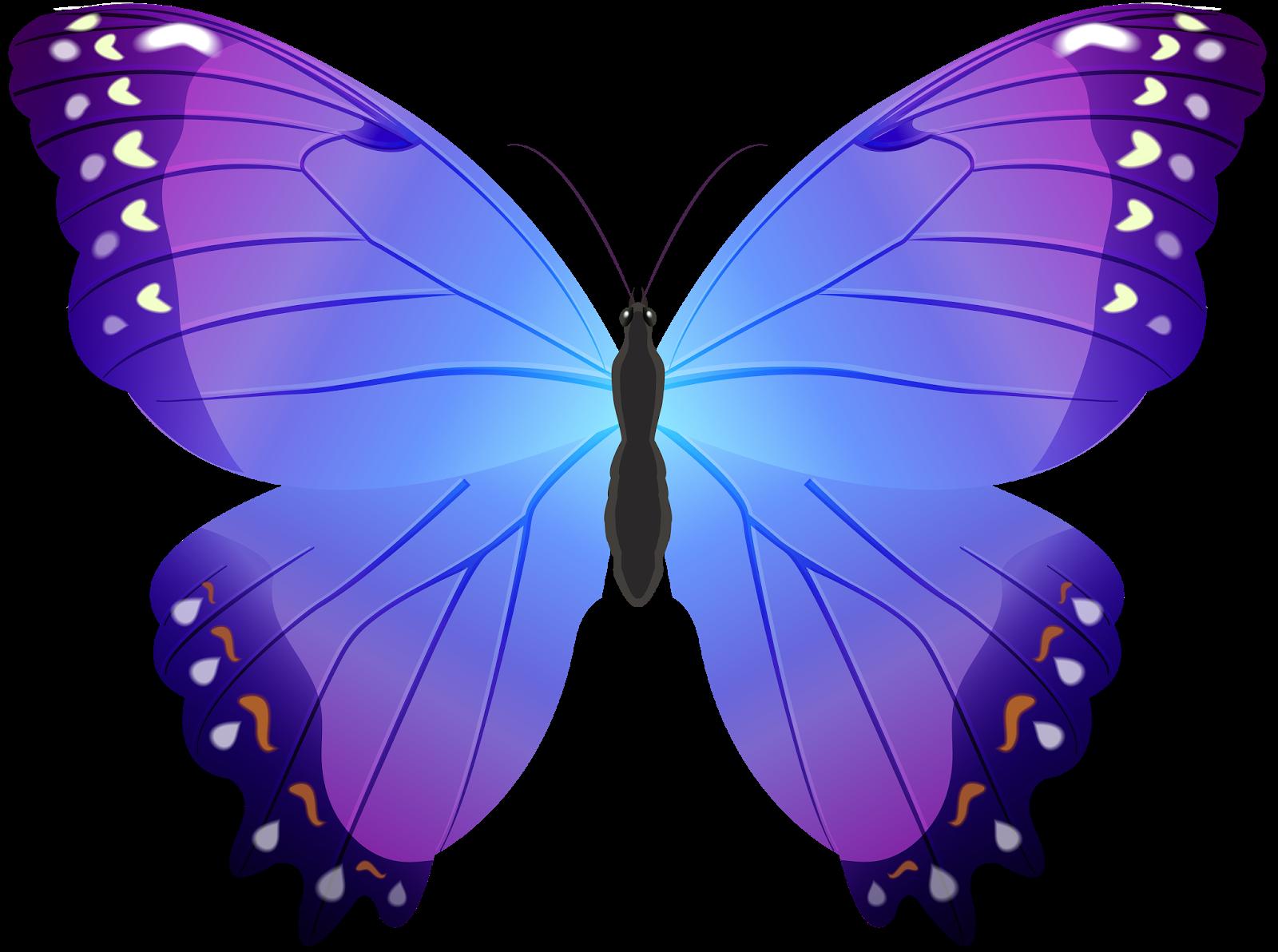 Картинка с бабочками на белом фоне
