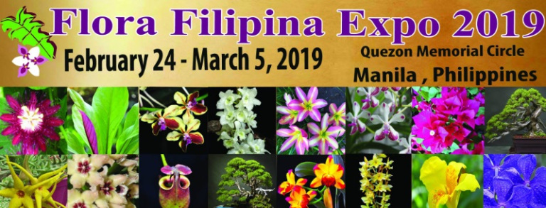 Philippine Orchid Events