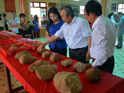 Traces of Homo erectus found in Vietnam