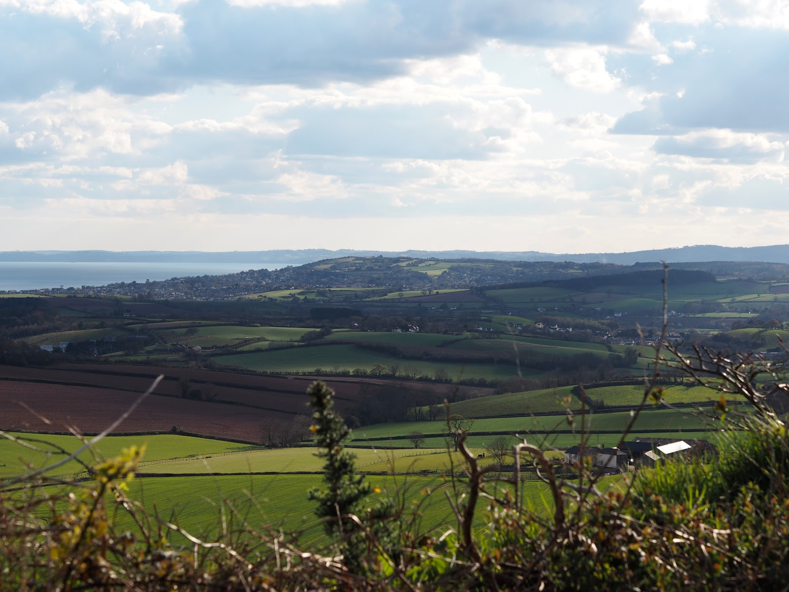 Patchwork fields with sky and sea behind, Devon