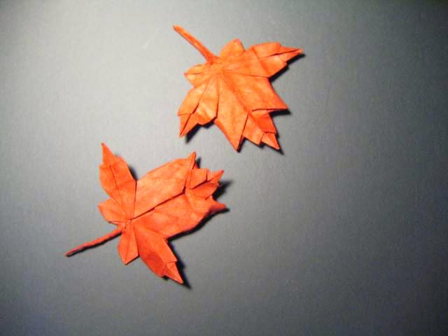 Maple Leaf Origami | Paper Origami Guide - photo#25