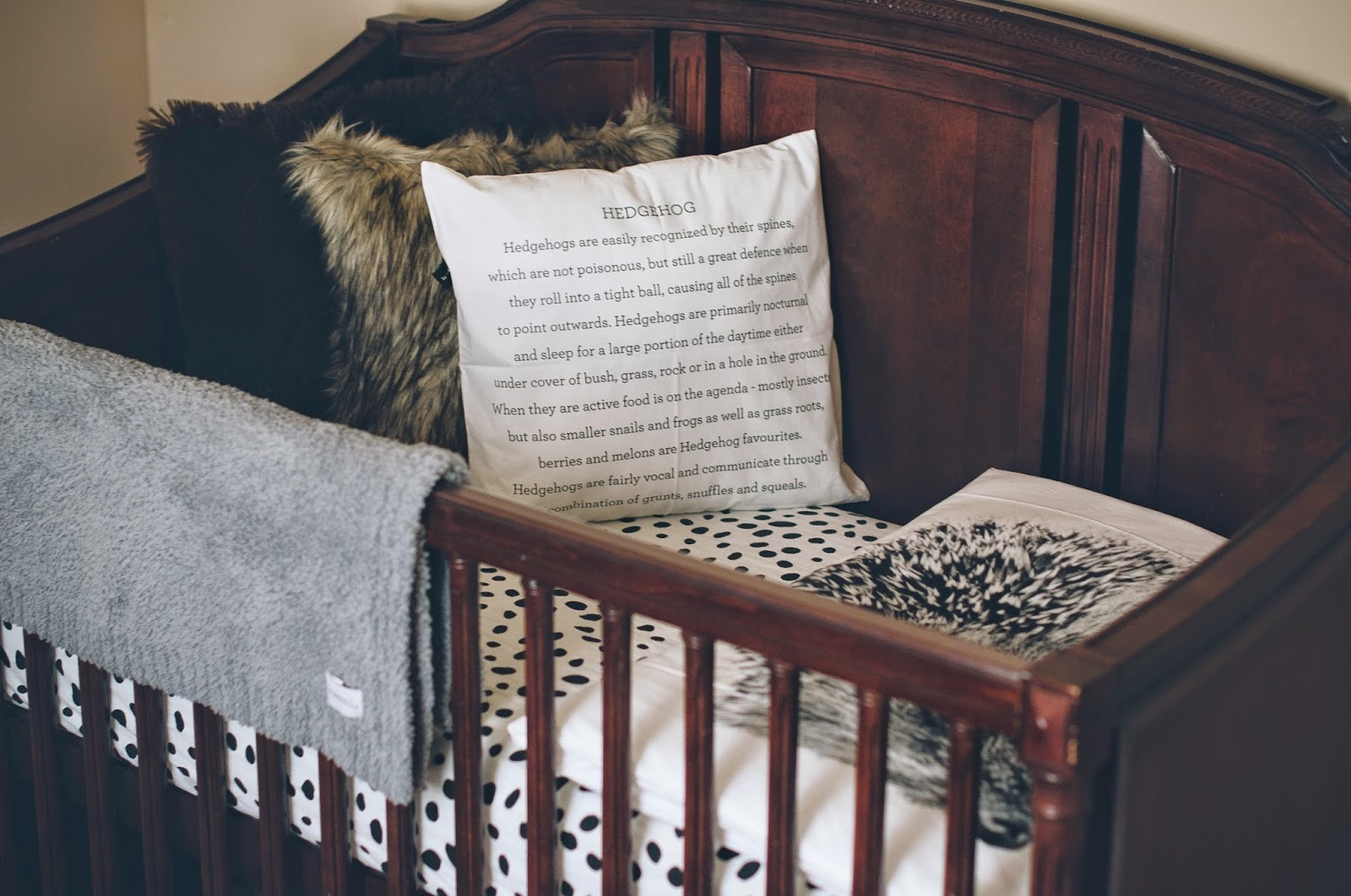 Cara Loren Baby Vb Nursery