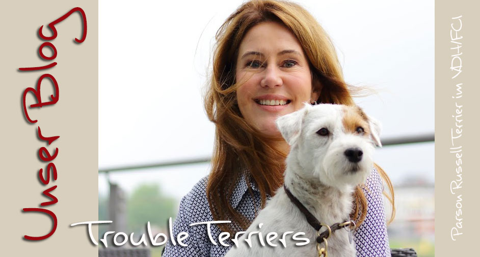 Trouble Terriers (KFT/ VDH )