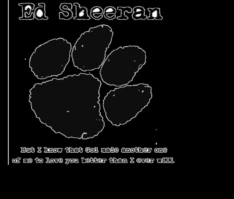 Custom T-shirts: Logos Ed Sheeran