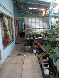 Taman samping rumah Jl. Ontoseno VII No. 49 Malang