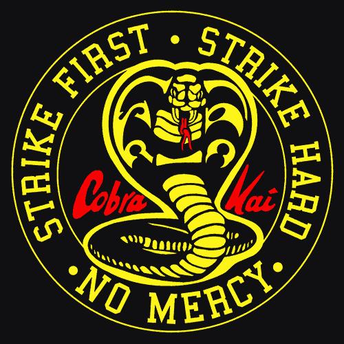 The Karate Kid Blog: Some Cobra Kai logos
