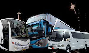 Sewa Bus Jogja Murah - Cuma 750rb Bisa Keliling Jogja