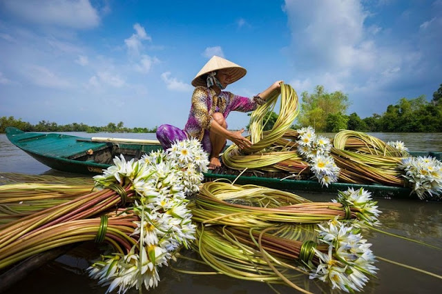 """A series of """"utopian"""" photos about Vietnam on foreign magazines makes you want to explore 4"""