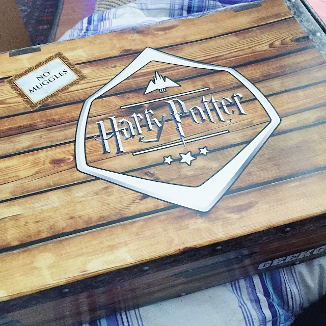 Harry Potter, geek gear, subscription box, HP, no muggles