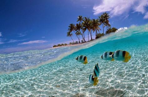 Tempat wisata pulau harapan