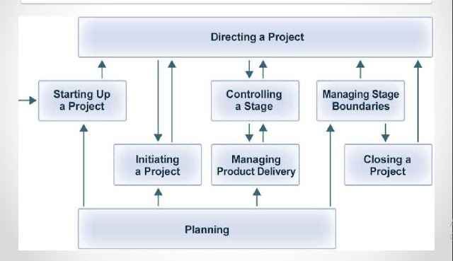 Download Project Management: Principles and Process pdf