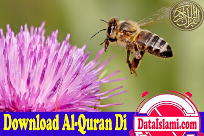 Download Surat An Nahl Mp3 Suara Merdu Terbaik