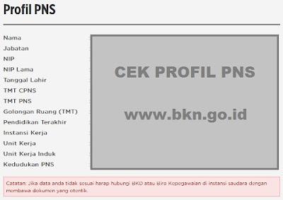 Cek Kenaikan Pangkat/Golongan PNS Periode April di www.bkn.go.id