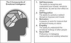 Pengertian Kecerdasan Emosional dan Pembagiannya