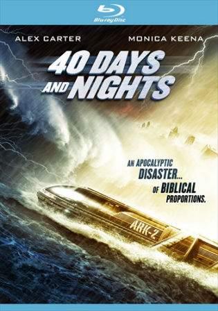 40 Days And Nights 2012 BRRip 700MB Hindi Dual Audio 720p