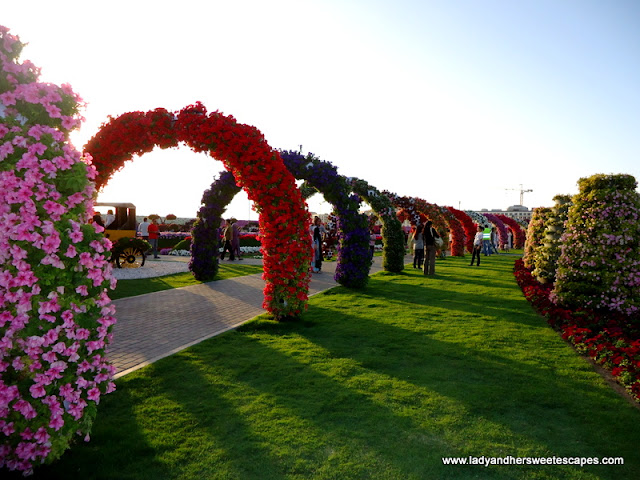 Lot of arcs at Miracle Garden