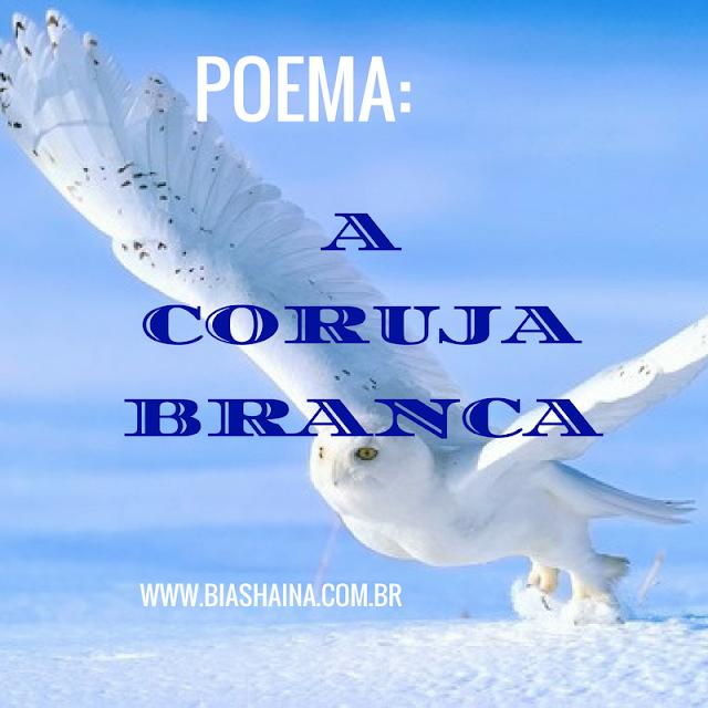 Coruja, coruja branca, Leitura, poemas, textos, textos motivacionais, poema de ledo ivo, poema sobre corujas,