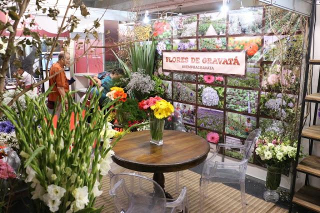 Flores gravataenses ganham destaque na 26º edição do Agrinordeste