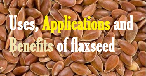 flaxseed benefits for health