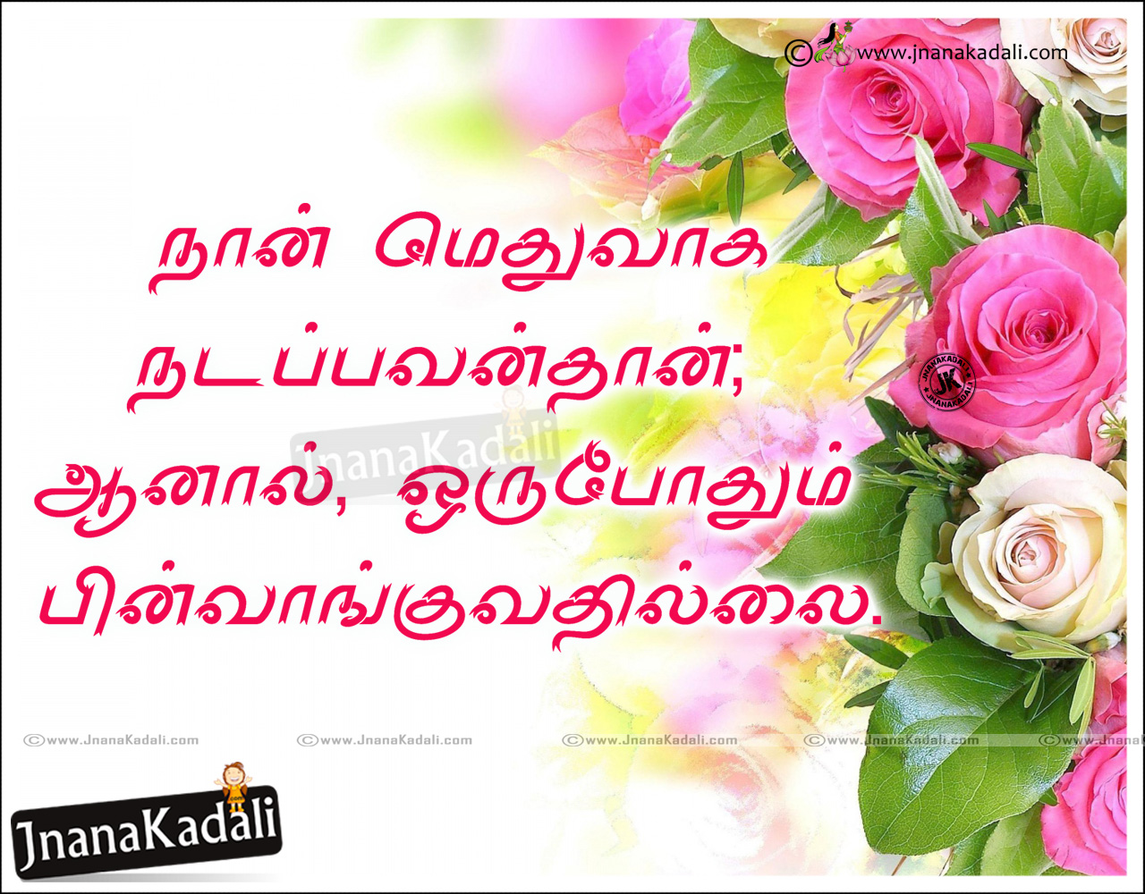 Life Inspirational Success Quotes Messages In Tamil Language Hd Wallpapers Jnana Kadali Com Telugu Quotes English Quotes Hindi Quotes Tamil Quotes Dharmasandehalu